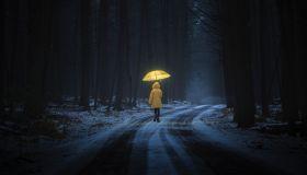 Little girl in the dark forest